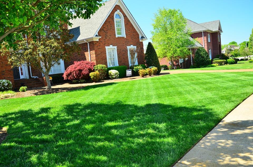 lawn-care-643561_960_720
