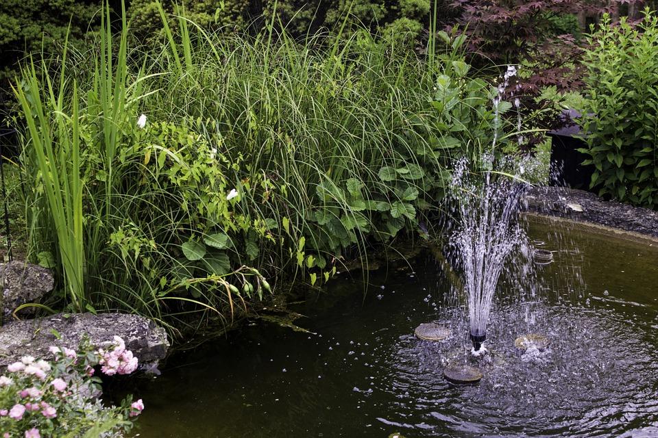 garden-400558_960_720